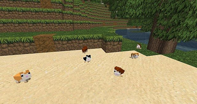 [1.6.4] Hamsterrific Mod Download