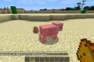 My-Buddy-Porkchop-Mod-1