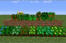 Magical-Crops-Mod-1