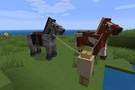 Pferde_5925819