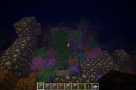 Coral-Reef-Mod-1